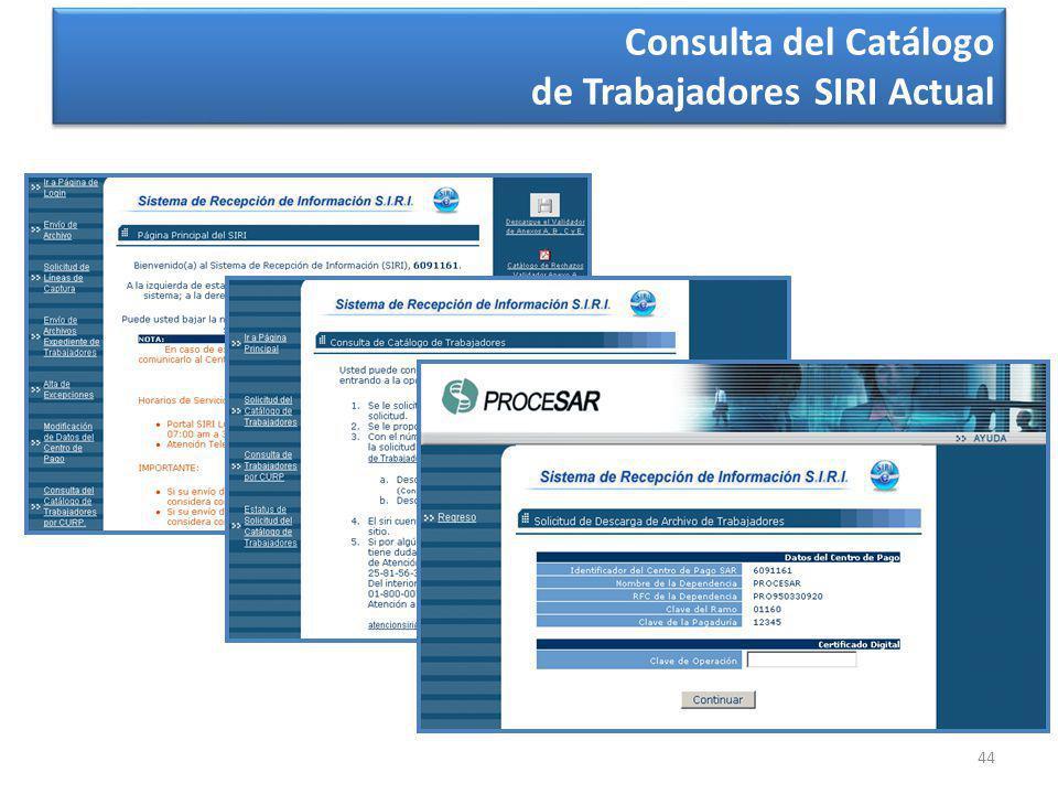 44 Consulta del Catálogo de Trabajadores SIRI Actual Consulta del Catálogo de Trabajadores SIRI Actual