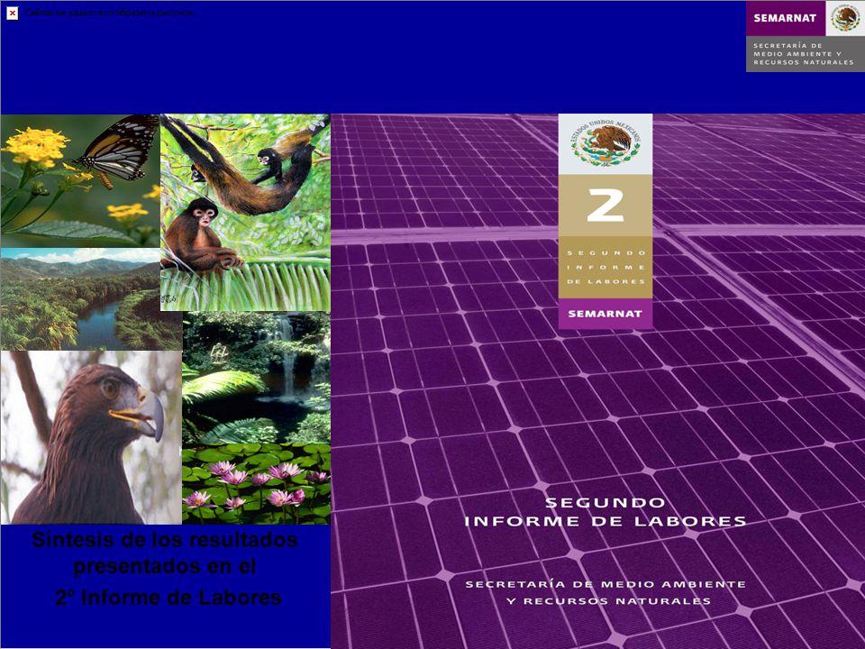 Síntesis de los resultados presentados en el 2° Informe de Labores