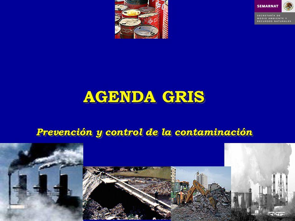 AGENDA GRIS Prevención y control de la contaminación AGENDA GRIS Prevención y control de la contaminación
