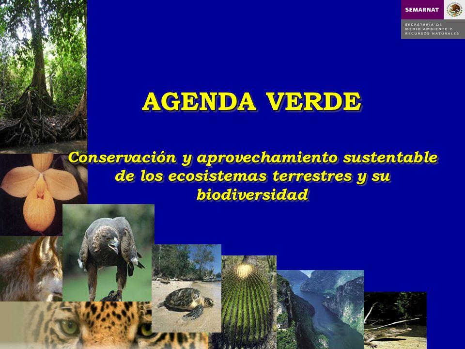 AGENDA VERDE Conservación y aprovechamiento sustentable de los ecosistemas terrestres y su biodiversidad AGENDA VERDE Conservación y aprovechamiento s