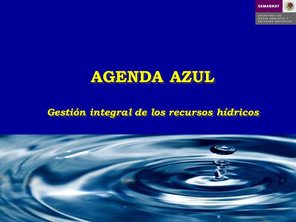 AGENDA AZUL Gestión integral de los recursos hídricos AGENDA AZUL Gestión integral de los recursos hídricos