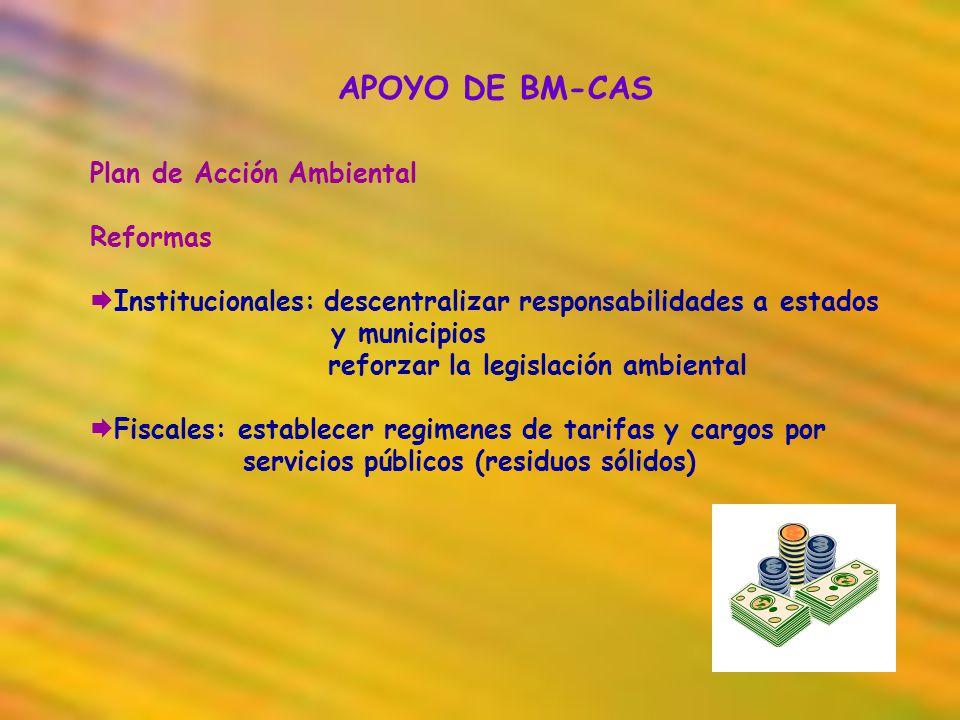 APOYO DE BM-CAS Plan de Acción Ambiental Reformas Institucionales: descentralizar responsabilidades a estados y municipios reforzar la legislación amb