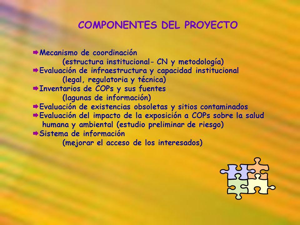COMPONENTES DEL PROYECTO Mecanismo de coordinación (estructura institucional- CN y metodología) Evaluación de infraestructura y capacidad instituciona