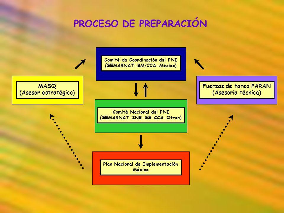 PROCESO DE PREPARACIÓN Comité de Coordinación del PNI (SEMARNAT-BM/CCA-México) Comité Nacional del PNI (SEMARNAT-INE-SS-CCA-Otros) Plan Nacional de Im
