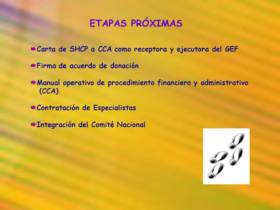 ETAPAS PRÓXIMAS Carta de SHCP a CCA como receptora y ejecutora del GEF Firma de acuerdo de donación Manual operativo de procedimiento financiero y adm