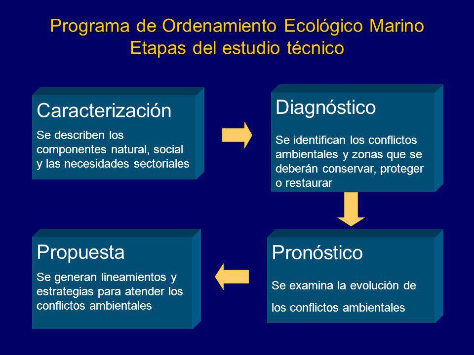 Programa de Ordenamiento Ecológico Marino Etapas del estudio técnico Caracterización Se describen los componentes natural, social y las necesidades se