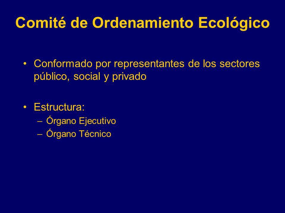 Conformado por representantes de los sectores público, social y privado Estructura: –Órgano Ejecutivo –Órgano Técnico Comité de Ordenamiento Ecológico
