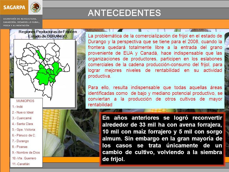 ANTECEDENTES MUNICIPIOS 1.- Indé 2.- Nuevo Ideal 3.- Cuencamé 4.- Santa Clara 5.- Gpe.