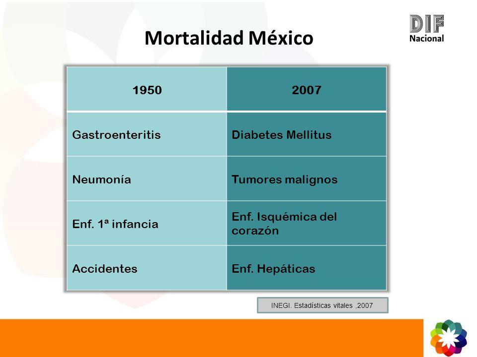 Mortalidad México INEGI. Estadísticas vitales,2007