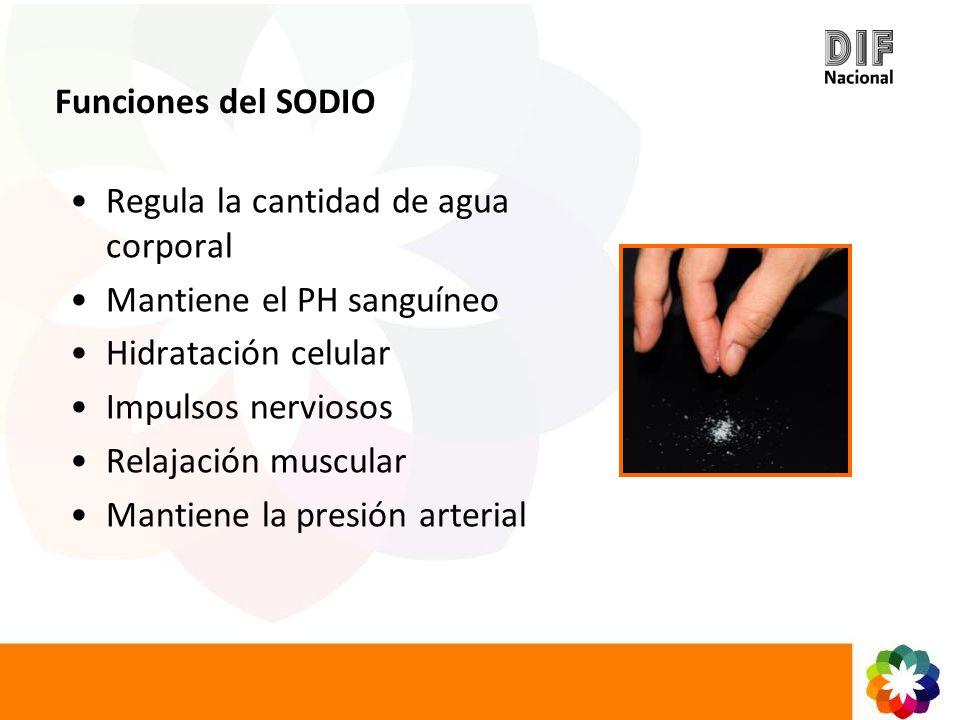 Funciones del SODIO Regula la cantidad de agua corporal Mantiene el PH sanguíneo Hidratación celular Impulsos nerviosos Relajación muscular Mantiene l