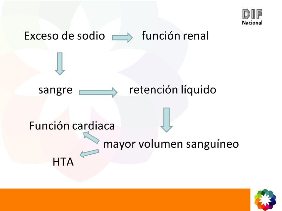 Exceso de sodio función renal sangre retención líquido Función cardiaca mayor volumen sanguíneo HTA