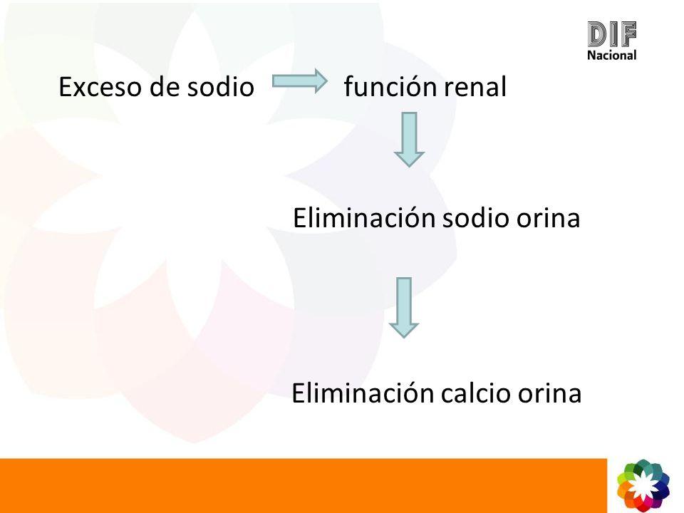 Exceso de sodio función renal Eliminación sodio orina Eliminación calcio orina