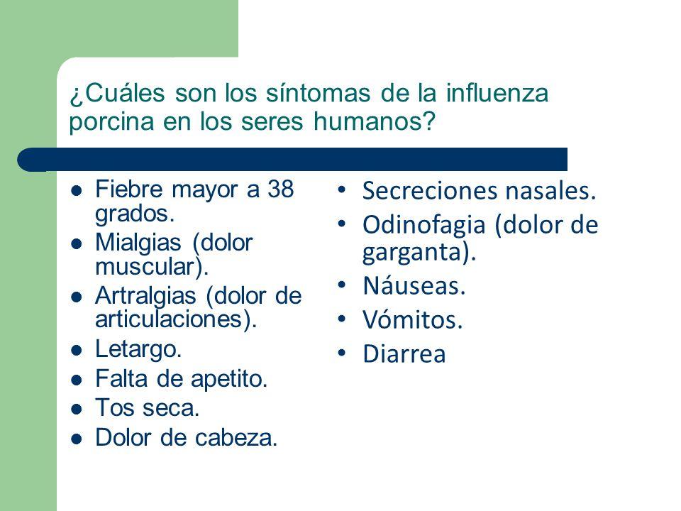 ¿Cuáles son los síntomas de la influenza porcina en los seres humanos? Fiebre mayor a 38 grados. Mialgias (dolor muscular). Artralgias (dolor de artic