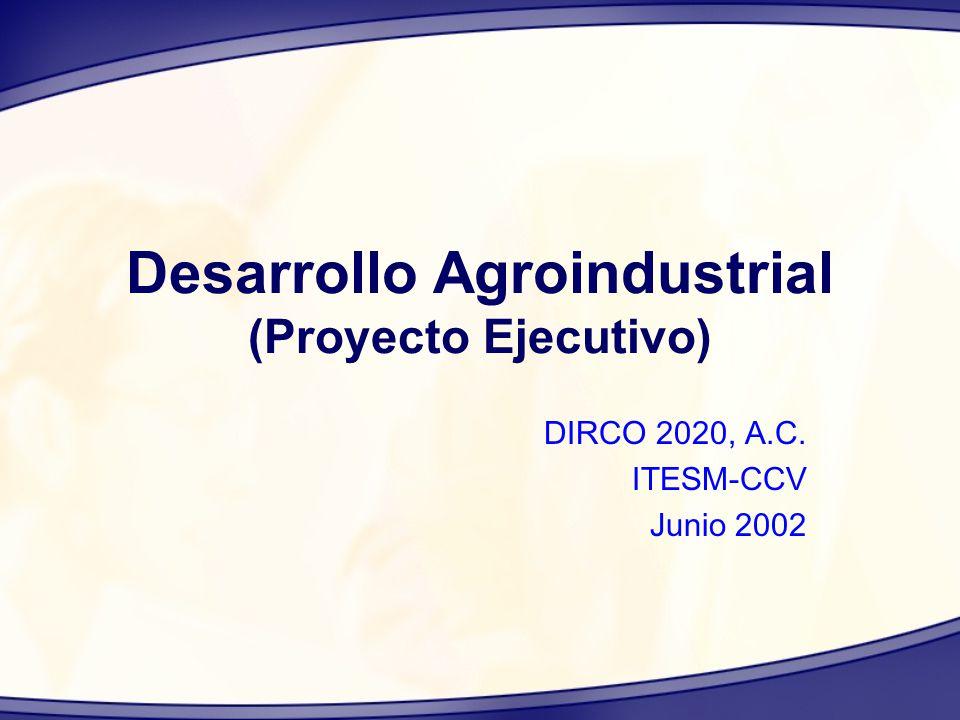 Desarrollo Agroindustrial (Proyecto Ejecutivo) DIRCO 2020, A.C. ITESM-CCV Junio 2002