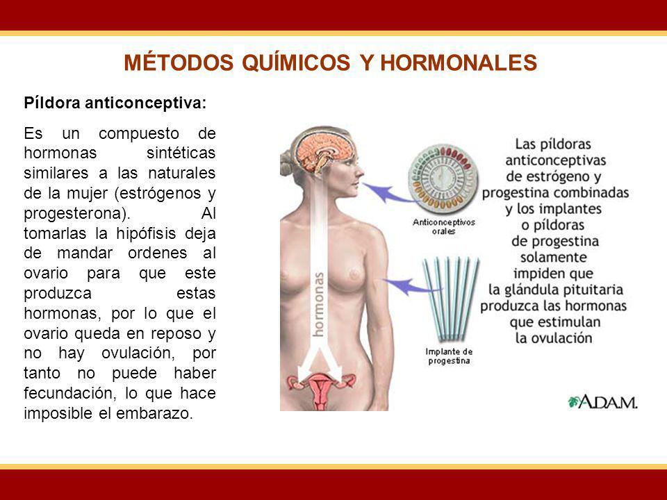 Píldora anticonceptiva: Es un compuesto de hormonas sintéticas similares a las naturales de la mujer (estrógenos y progesterona). Al tomarlas la hipóf