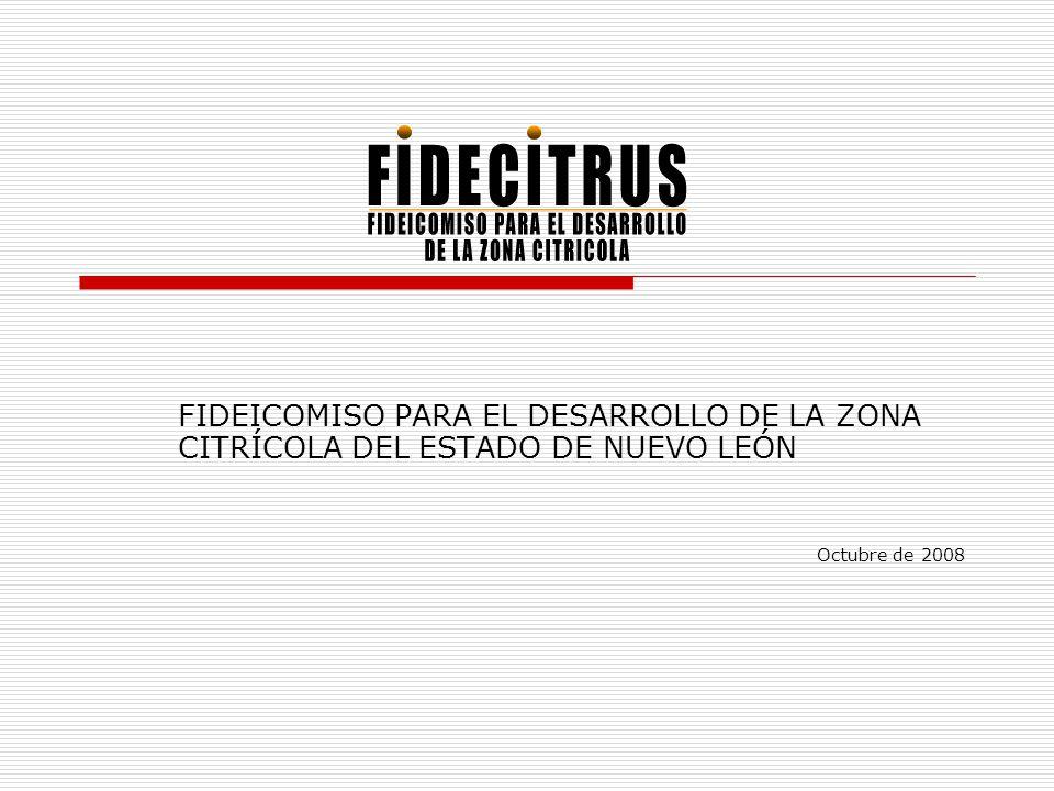 ¿Qué es FIDECITRUS.
