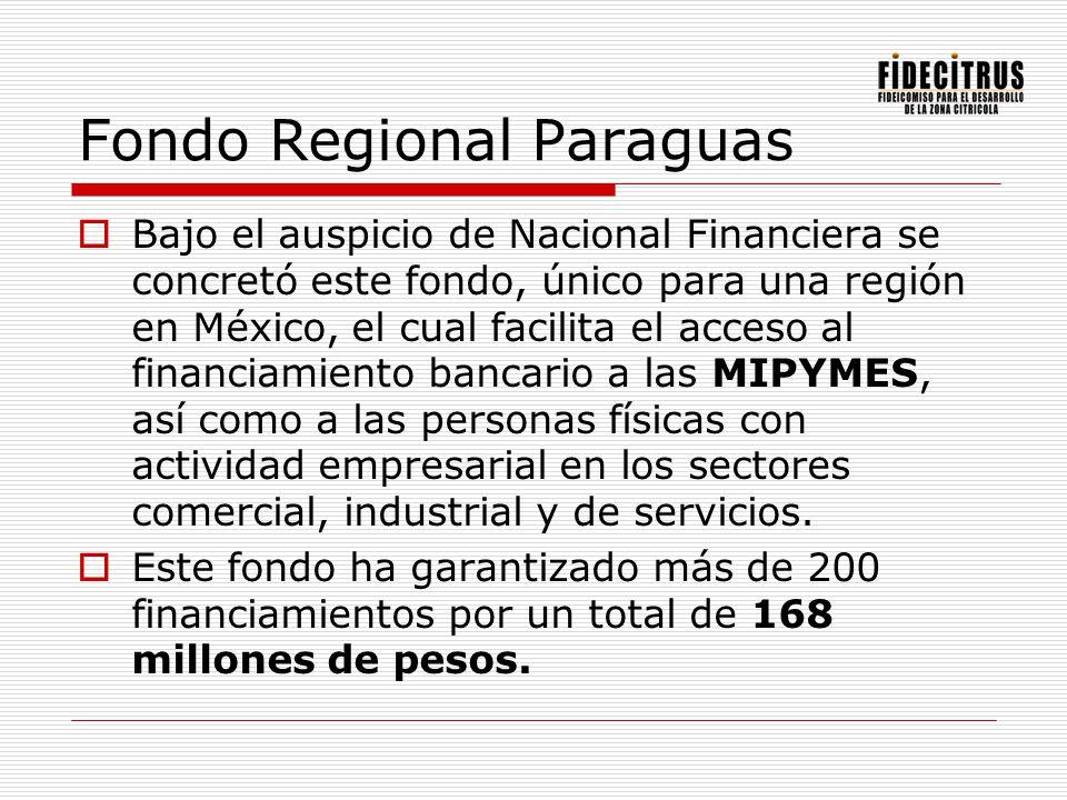 Fondo Regional Paraguas Bajo el auspicio de Nacional Financiera se concretó este fondo, único para una región en México, el cual facilita el acceso al