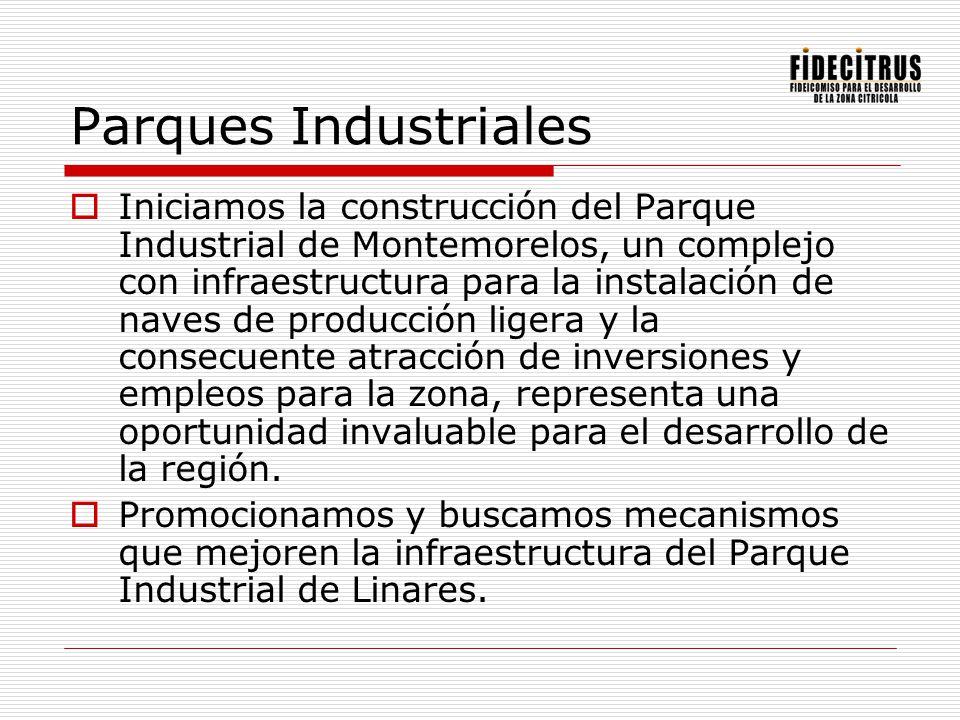 Parques Industriales Iniciamos la construcción del Parque Industrial de Montemorelos, un complejo con infraestructura para la instalación de naves de
