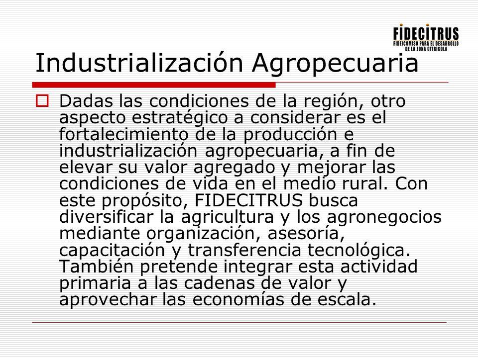Industrialización Agropecuaria Dadas las condiciones de la región, otro aspecto estratégico a considerar es el fortalecimiento de la producción e indu