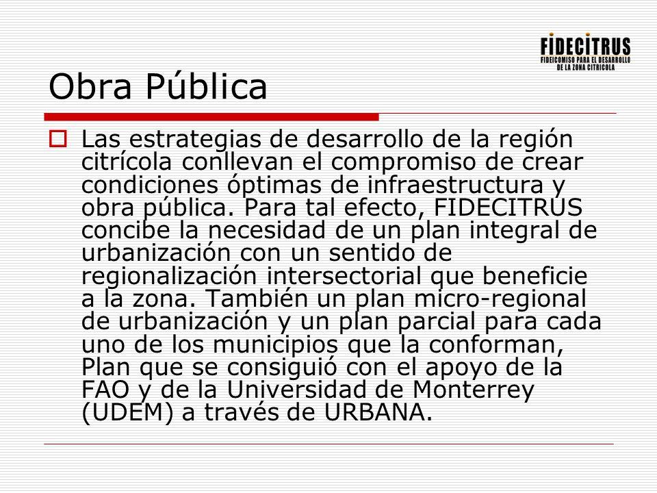 Obra Pública Las estrategias de desarrollo de la región citrícola conllevan el compromiso de crear condiciones óptimas de infraestructura y obra públi