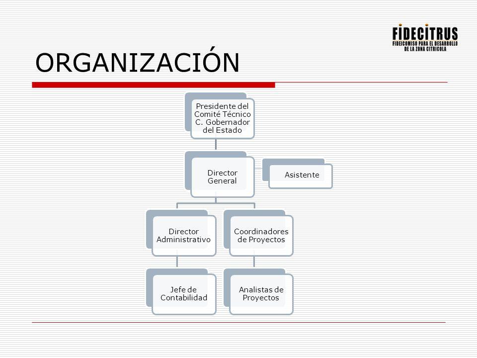 Política de Calidad 2004 Misión Desarrollamos integralmente la Zona Citrícola del Estado de Nuevo León, estableciendo e impulsando para ello programas, proyectos y estrategias de Clase Mundial que soporten dicho desarrollo.