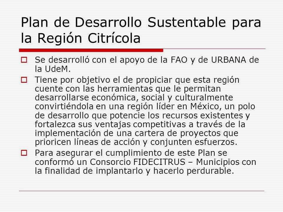 Plan de Desarrollo Sustentable para la Región Citrícola Se desarrolló con el apoyo de la FAO y de URBANA de la UdeM. Tiene por objetivo el de propicia