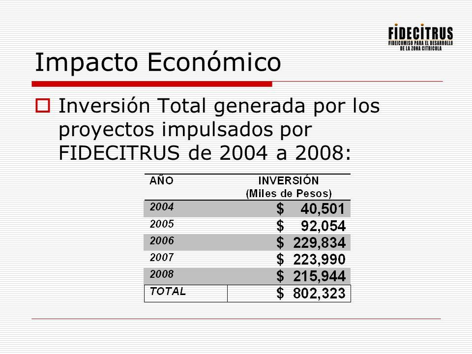 Fondo Regional Paraguas Bajo el auspicio de Nacional Financiera se concretó este fondo, único para una región en México, el cual facilita el acceso al financiamiento bancario a las MIPYMES, así como a las personas físicas con actividad empresarial en los sectores comercial, industrial y de servicios.