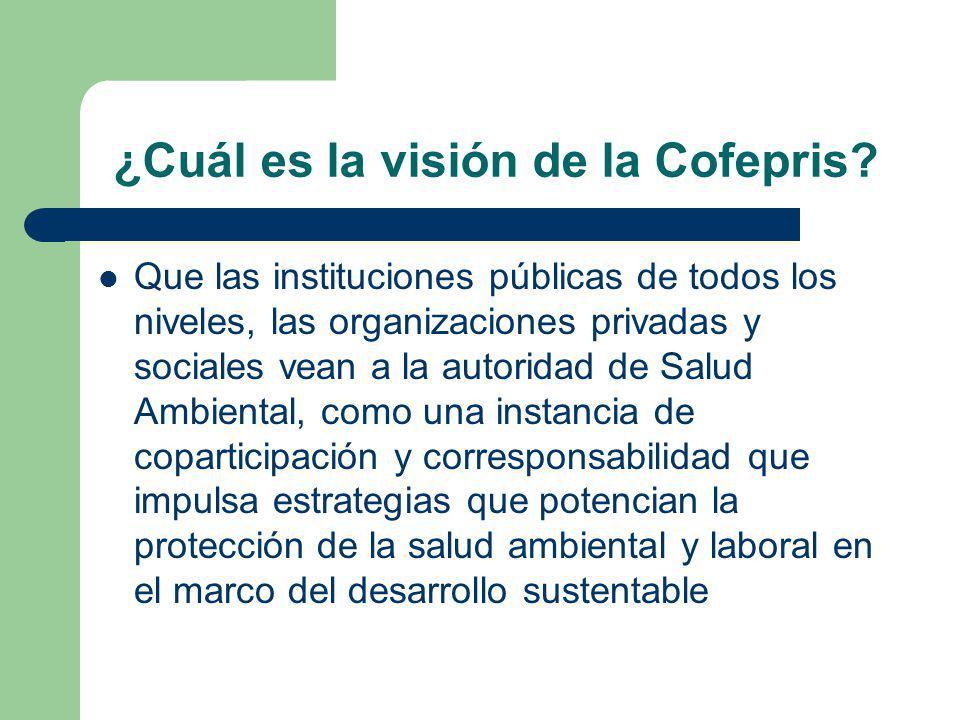 ¿Cuál es la visión de la Cofepris.