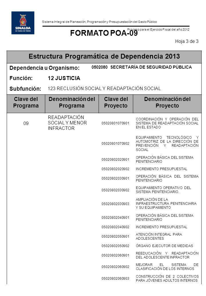 Sistema Integral de Planeación, Programación y Presupuestación del Gasto Público Proceso para el Ejercicio Fiscal del año 2012 FORMATO POA-09 Hoja 3 d