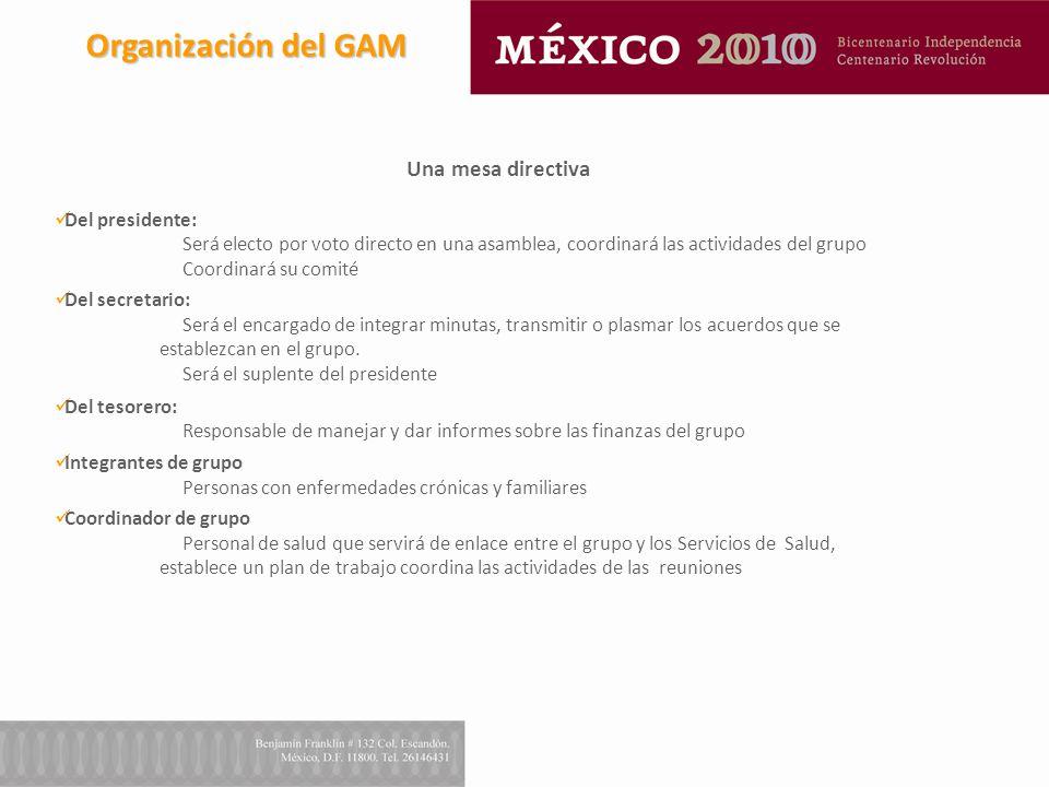 Organización del GAM Una mesa directiva Del presidente: Será electo por voto directo en una asamblea, coordinará las actividades del grupo Coordinará