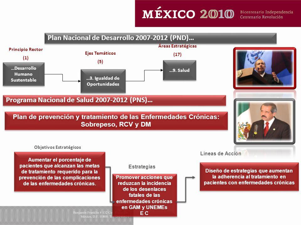 …Desarrollo Humano Sustentable Plan Nacional de Desarrollo 2007-2012 (PND)… Ejes Temáticos (5) Áreas Estratégicas (17) Principio Rector (1) Objetivos Estratégicos Estrategias Líneas de Acción …3.