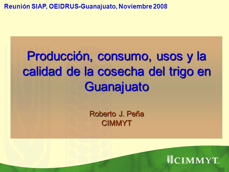 Producción, consumo, usos y la calidad de la cosecha del trigo en Guanajuato Roberto J. Peña CIMMYT Reunión SIAP, OEIDRUS-Guanajuato, Noviembre 2008