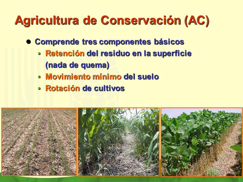 Agricultura de Conservación (AC) Comprende tres componentes básicos Comprende tres componentes básicos Retención del residuo en la superficie Retenció