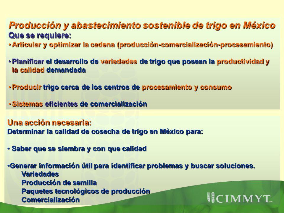 Producción y abastecimiento sostenible de trigo en México Que se requiere: Articular y optimizar la cadena (producción-comercialización-procesamiento)