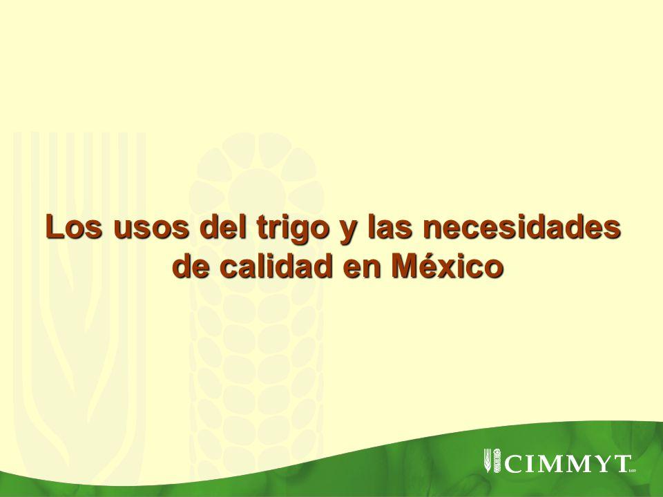 Los usos del trigo y las necesidades de calidad en México