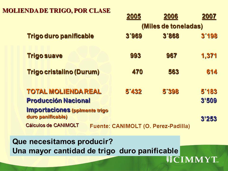 MOLIENDA DE TRIGO, POR CLASE Cálculos de CANIMOLT 200520062007 (Miles de toneladas) Trigo duro panificable 3´9693´8683´198 Trigo suave 993 993 967 967
