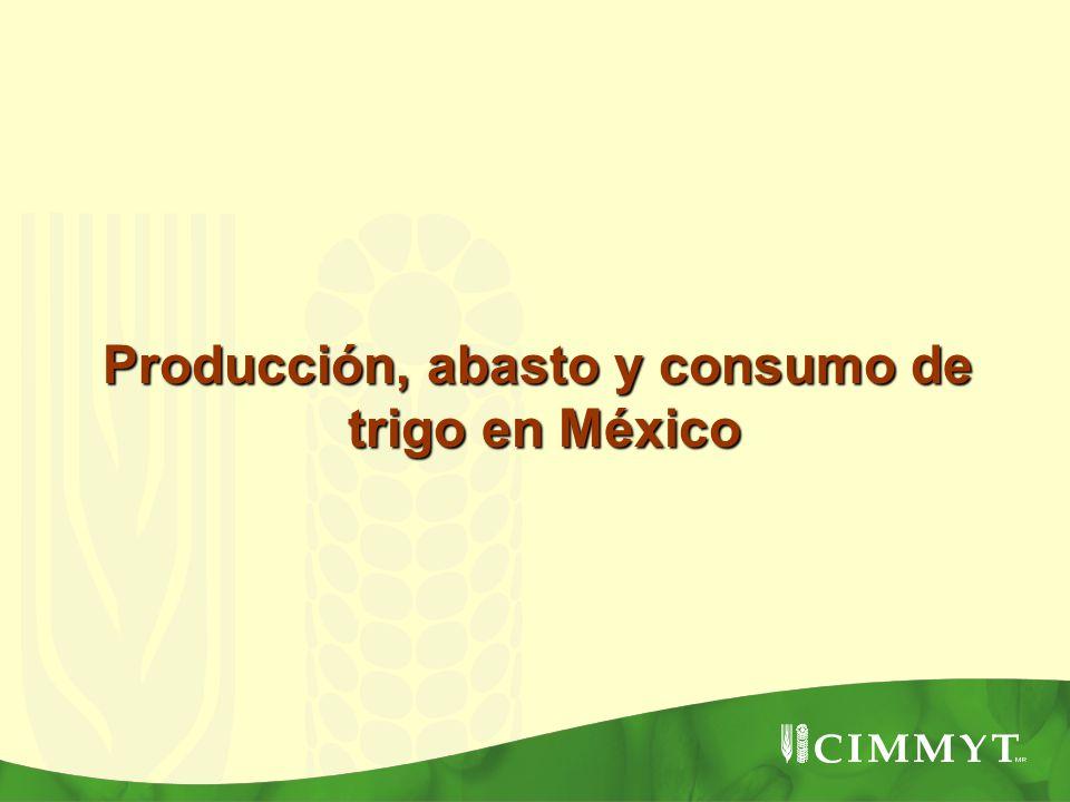 Rendimiento del trigo de riego y temporal en México (ton/ha) Área de cultivo y rendimiento de trigo en los últimos 24 años en México El área de cultivo de trigo a disminuido considerablemente Producción: En 1985-89: 4.66 MT En 2006: 3.38 MT El rendimiento (ton/ha) se ha incrementado substancialmente