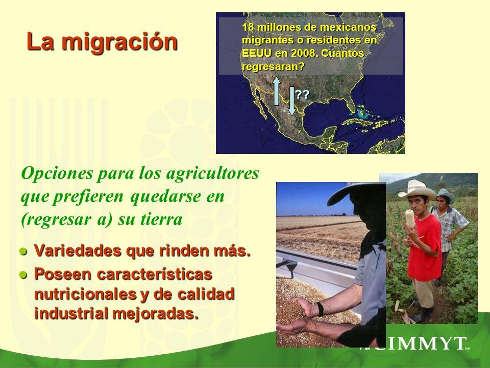 18 millones de mexicanos migrantes o residentes en EEUU en 2008. Cuantos regresaran? Opciones para los agricultores que prefieren quedarse en (regresa