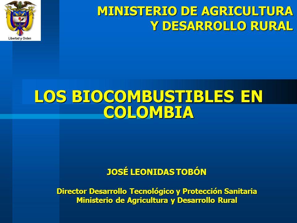 LOS BIOCOMBUSTIBLES EN COLOMBIA JOSÉ LEONIDAS TOBÓN Director Desarrollo Tecnológico y Protección Sanitaria Ministerio de Agricultura y Desarrollo Rura
