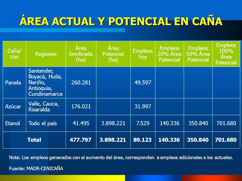 ÁREA ACTUAL Y POTENCIAL EN CAÑA Nota: Los empleos generados con el aumento del área, corresponden a empleos adicionales a los actuales. Fuente: MADR-C
