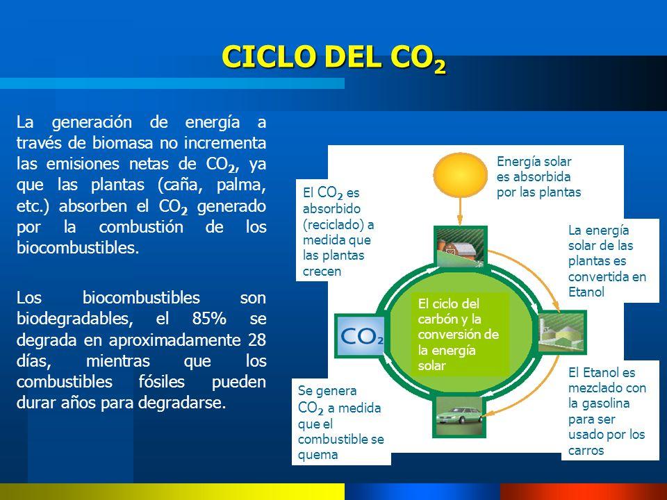 La generación de energía a través de biomasa no incrementa las emisiones netas de CO 2, ya que las plantas (caña, palma, etc.) absorben el CO 2 genera