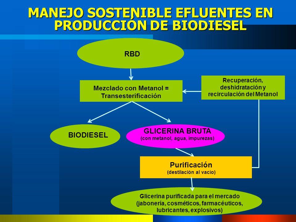 MANEJO SOSTENIBLE EFLUENTES EN PRODUCCIÓN DE BIODIESEL RBD Mezclado con Metanol = Transesterificación GLICERINA BRUTA (con metanol, agua, impurezas) B