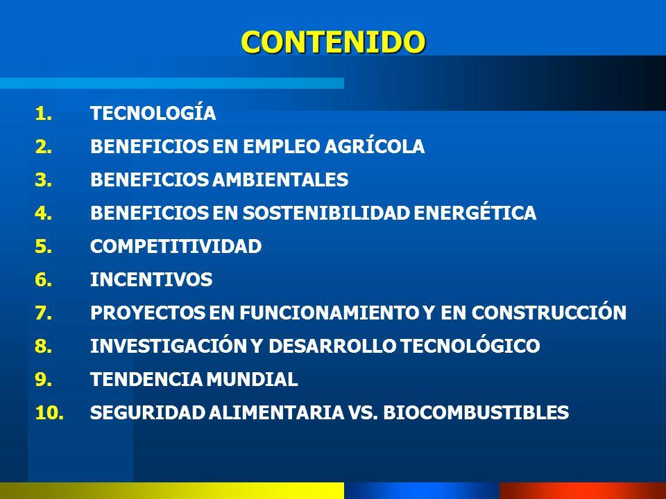 CONTENIDO 1.TECNOLOGÍA 2.BENEFICIOS EN EMPLEO AGRÍCOLA 3.BENEFICIOS AMBIENTALES 4.BENEFICIOS EN SOSTENIBILIDAD ENERGÉTICA 5.COMPETITIVIDAD 6.INCENTIVO