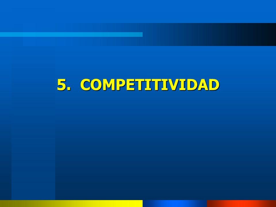 5. COMPETITIVIDAD