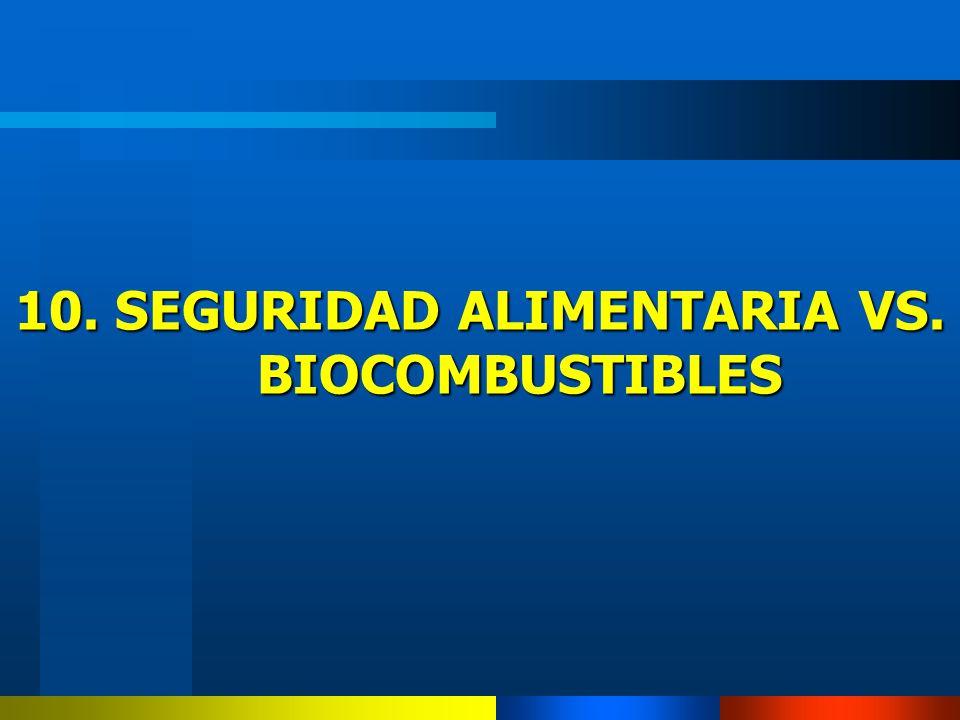 10. SEGURIDAD ALIMENTARIA VS. BIOCOMBUSTIBLES
