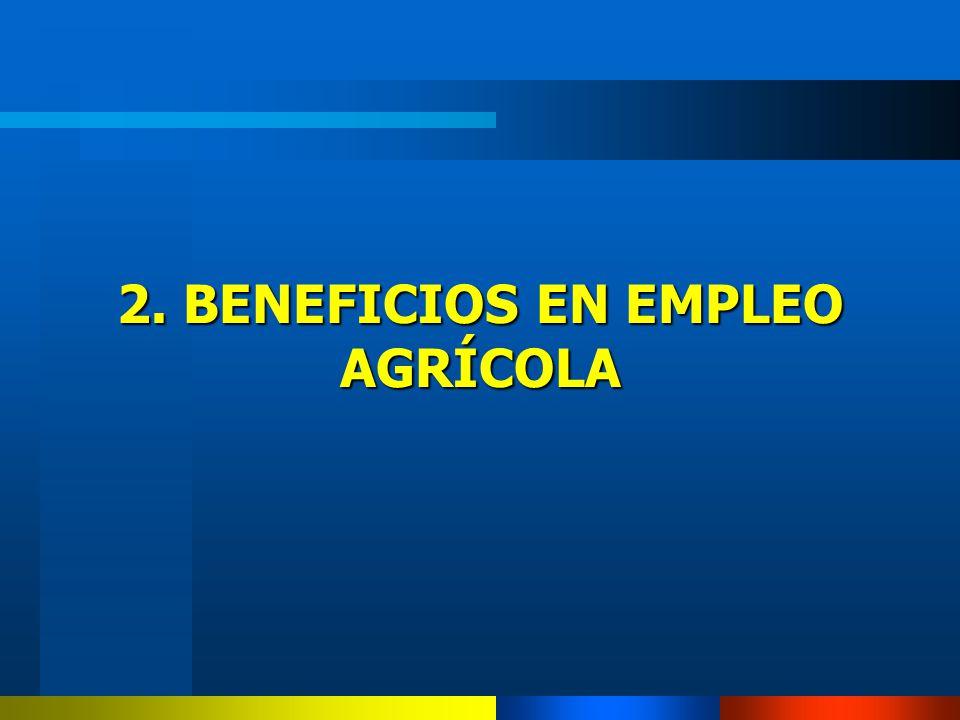 2. BENEFICIOS EN EMPLEO AGRÍCOLA