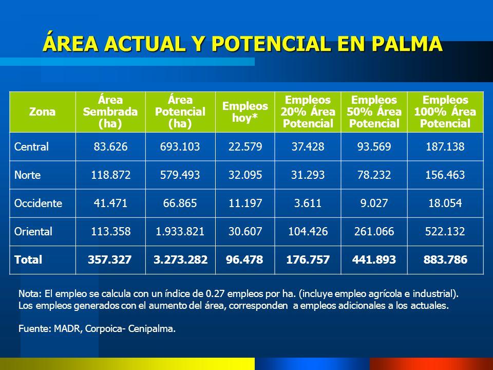 ÁREA ACTUAL Y POTENCIAL EN PALMA Nota: El empleo se calcula con un índice de 0.27 empleos por ha. (incluye empleo agrícola e industrial). Los empleos