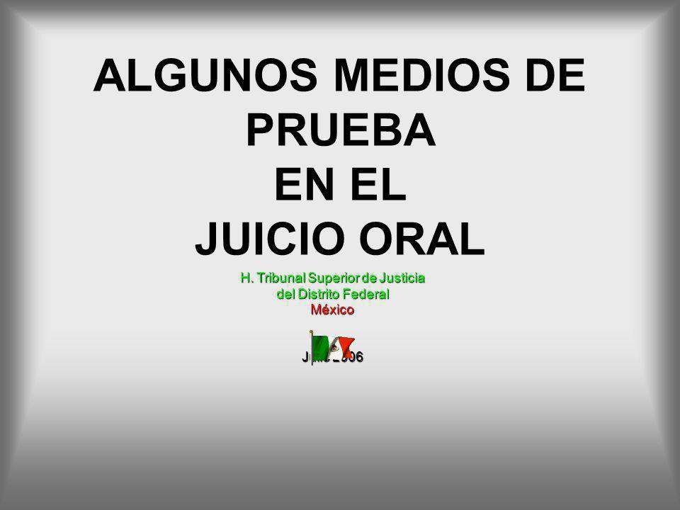 ALGUNOS MEDIOS DE PRUEBA EN EL JUICIO ORAL H. Tribunal Superior de Justicia del Distrito Federal México Julio 2006