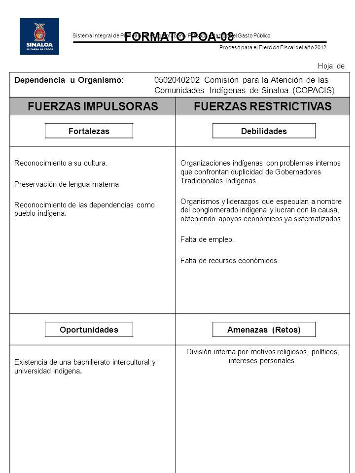 Sistema Integral de Planeación, Programación y Presupuestación del Gasto Público Proceso para el Ejercicio Fiscal del año 2012 FORMATO POA-08 Hoja de