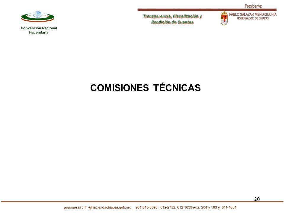 20 COMISIONES TÉCNICAS